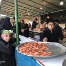 تصاویر پذیرایی موکب ها از زائرین پیاده امام رضا(ع)