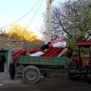 تصاویر وضعیت امدادرسانی در روستای زلزله زده ورنکش
