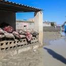 نحوه تامین ارزاق عمومی سیل زدگان سیستان و بلوچستان -  خوراک دامهای مردم نیز تامین میشود