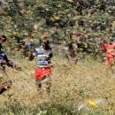 تصاویر حمله گلههای ملخ به شرق آفریقا