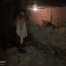 تصاویر زمین لرزه ۵.۴ ریشتری در خانه زنیان استان فارس