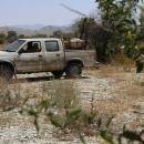 تصاویر مبارزه با ملخ های صحرایی در شهرستان سیریک