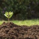 جایگاه خاک در کشور را ارتقاء دهیم