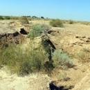 خشکسالی روند فرونشست در جعفریه قم را سرعت بخشیده است