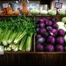 تولید میوه و محصول سالم هدف سازمان جهاد کشاورزی قم است