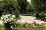 اضافه شدن 18 هکتار به مساحت فضای سبز شهرداری اصفهان